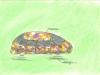 a-jv-autja-plyzat-068